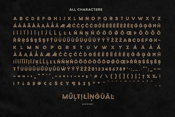 Wildborn Vintage Sans Typeface in Display Fonts - product preview 10