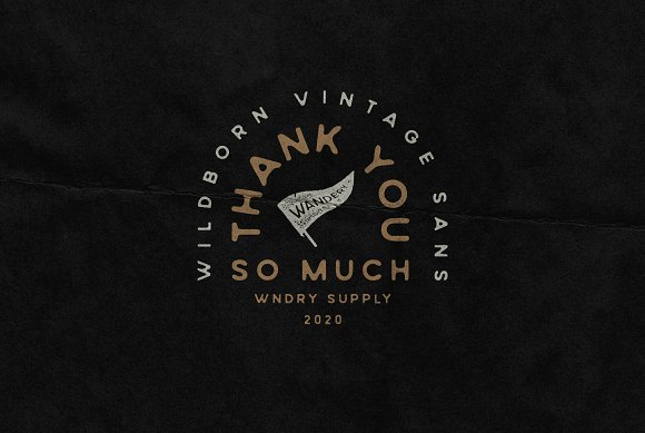 Wildborn Vintage Sans Typeface in Display Fonts - product preview 12