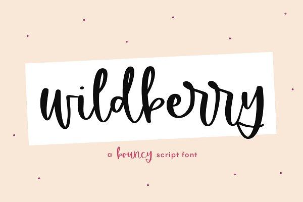 Wildberry | Handwritten Script Font
