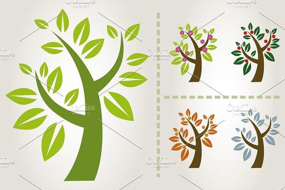 Tree collection & Seasons