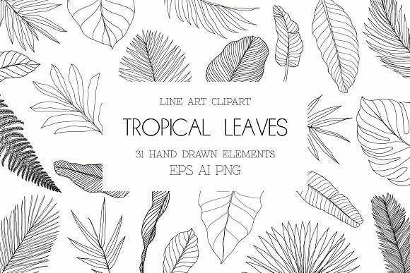 Line Art Tropical Leaves Clipart Pre Designed Photoshop Graphics Creative Market 51 transparent png illustrations and cipart matching tropical leaves. line art tropical leaves clipart