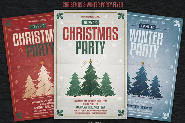 Christmas & Winter Party Flyer
