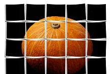 pumpkin white.jpg
