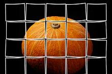 pumpkin black.jpg