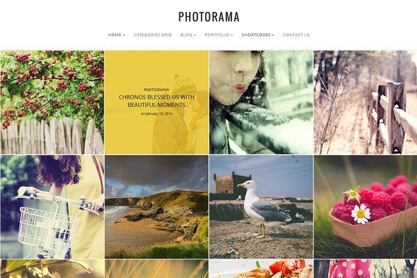 WordPress Photography Themes: WPSynergy - Photorama - Photography WP Theme