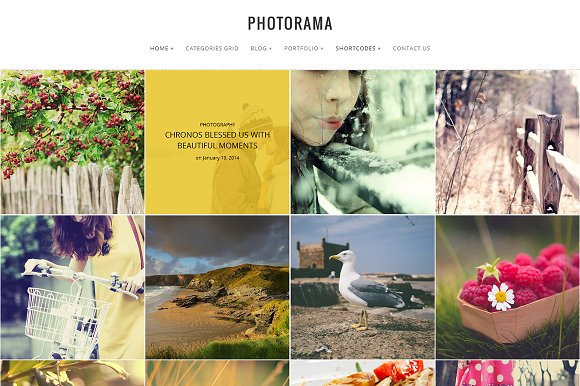 Photorama - Photography WP Theme