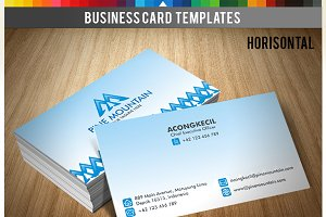 Premium Business Card - PineMountain