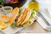 mix italian panini sandwich 2.jpg