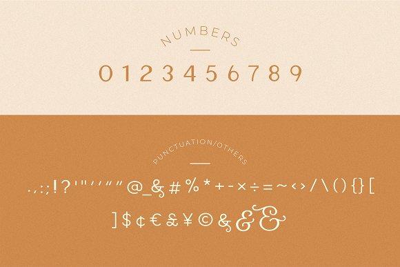 Carla Sans -Elegant Typeface in Sans-Serif Fonts - product preview 4