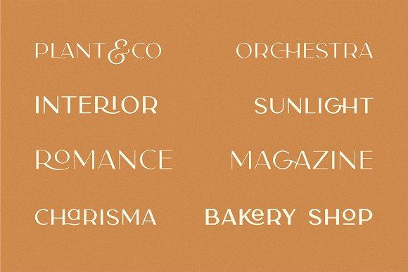 Carla Sans -Elegant Typeface in Sans-Serif Fonts - product preview 6