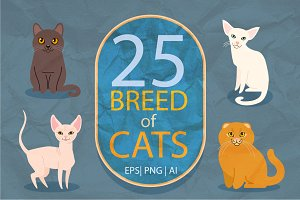 25 breeds of cats, vector