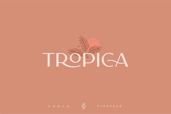 Carla Sans -Elegant Typeface in Sans-Serif Fonts - product preview 15