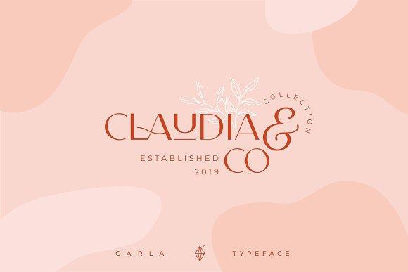 Carla Sans -Elegant Typeface in Sans-Serif Fonts - product preview 16