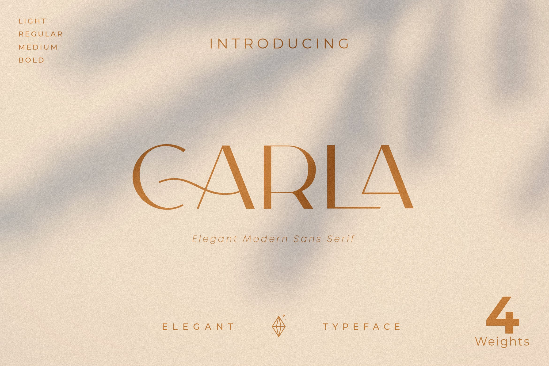 Carla-Sans-Elegant-Typeface-www.mockuphill.com