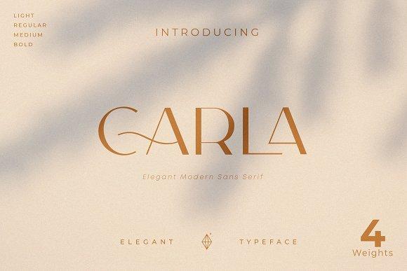 Carla Sans -Elegant Typeface in Sans-Serif Fonts - product preview 21