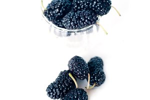 fresh mulberry 3.jpg