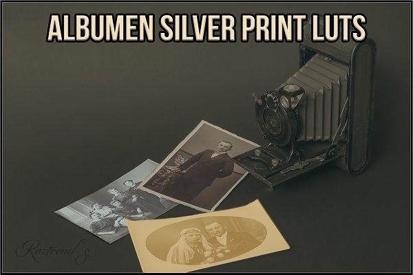 Albumen Silver Print LUTs