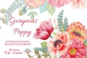 Gorgeous Poppy Watercolor Clipart