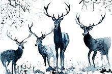 Christmas card deer in the woods