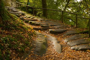 A rock staircase in autumn forest