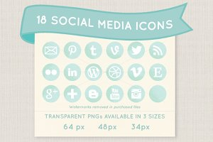 Mint social media icon set