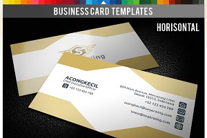 Premium Business Card - Seger Wings