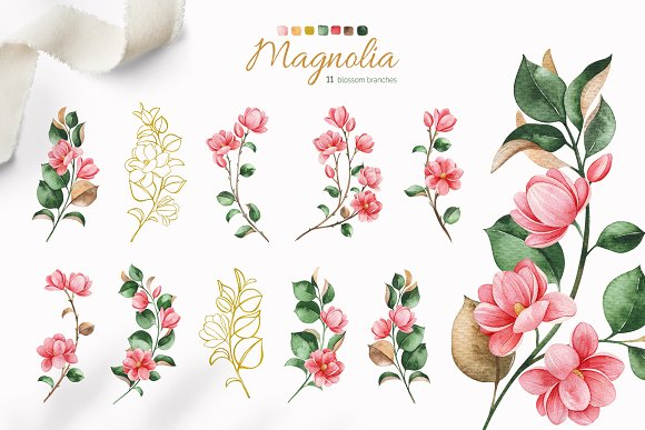 Magnolia.Gentle Floral Collection in Illustrations - product preview 3