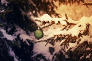 Green christmas ball on the branch