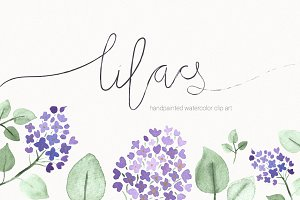 lilacs hand-painted watercolor set