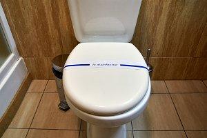 Flush toilet lavatory