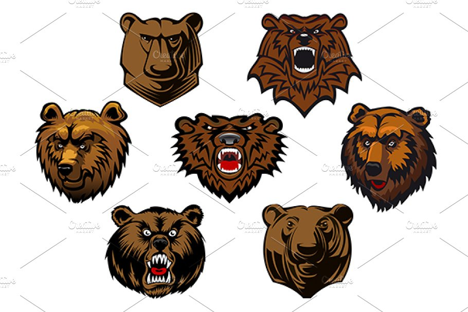 Different brown bear heads in Graphics