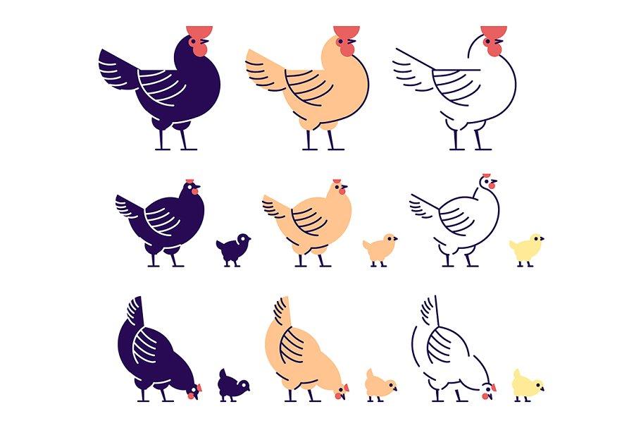 Chickens flat illustrations set