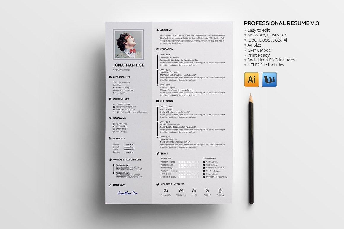 professional resume v3 resume templates creative market - What A Professional Resume Looks Like
