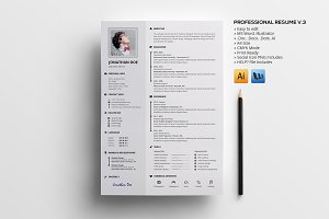 Professional Resume V.3