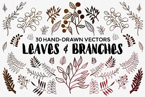 Hand Drawn Vector Leaves & Branches