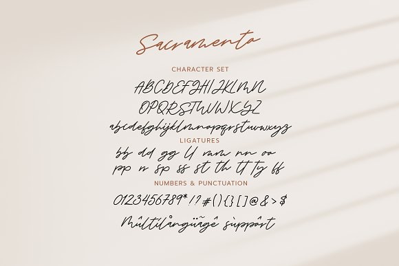 Sacramento // Sale in Script Fonts - product preview 6