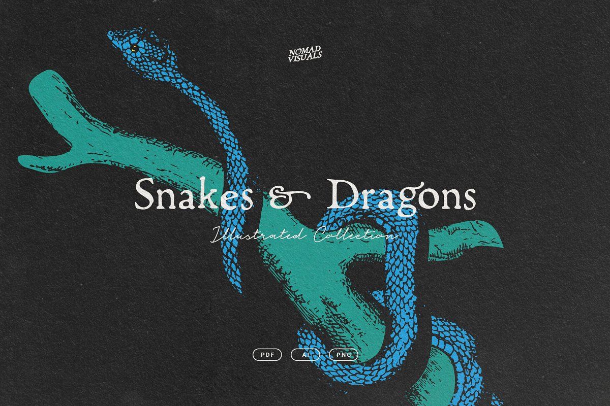 Snakes & Dragons in Illustrations - product preview 8