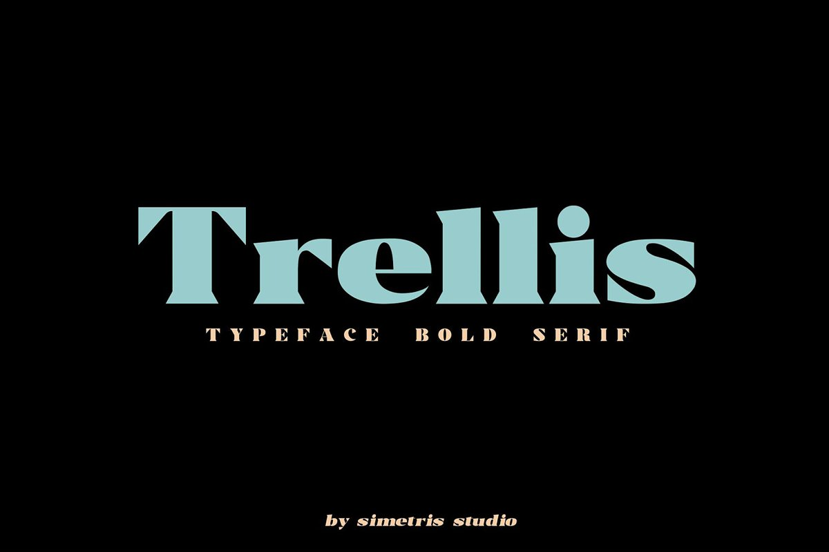 Trellis//Typeface Bold Serif in Serif Fonts - product preview 8
