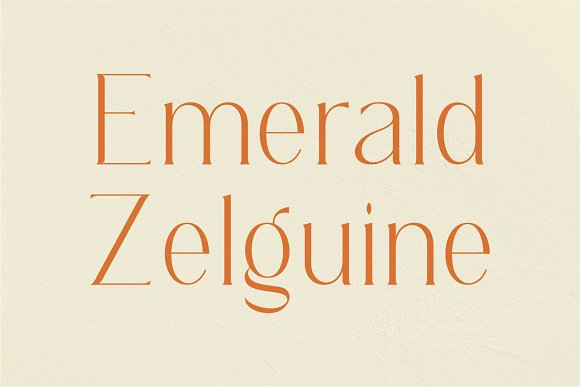 REGOZA//Typeface Slim Serif in Serif Fonts - product preview 4