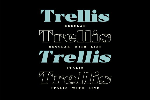 Trellis//Typeface Bold Serif in Serif Fonts - product preview 4