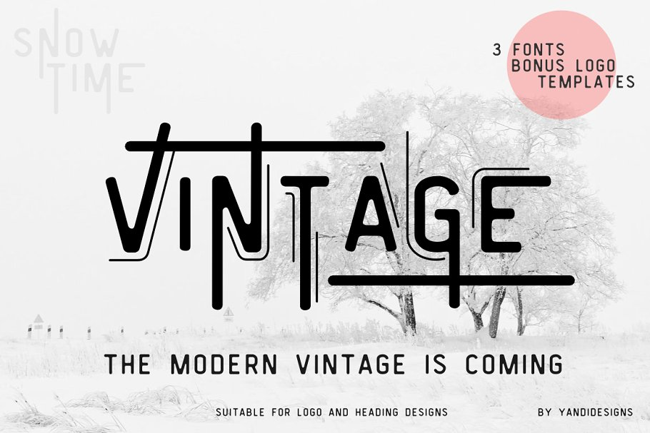 Vintage Modern Typeface ~ Display Fonts ~ Creative Market