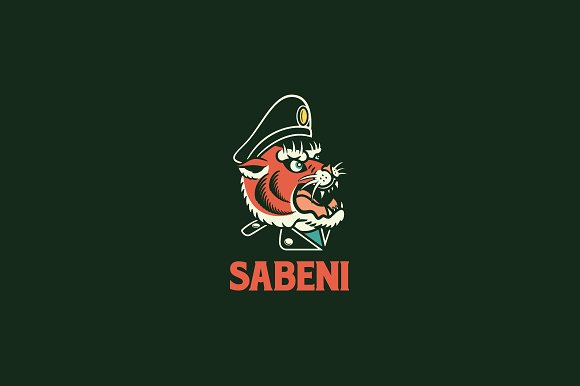 Sabeni Logo Template in Logo Templates - product preview 1