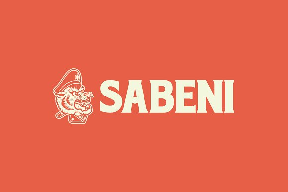 Sabeni Logo Template in Logo Templates - product preview 3