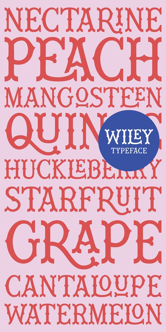 Wiley Decorative Latin & Greek Font in Display Fonts - product preview 7