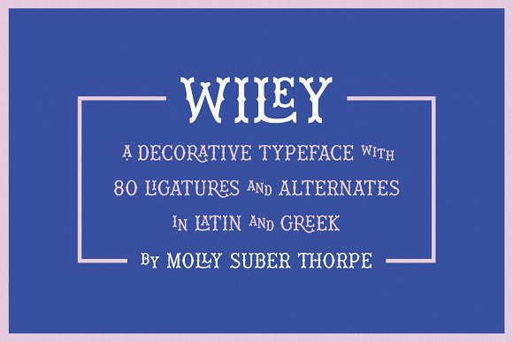 Wiley Decorative Latin & Greek Font in Display Fonts - product preview 12