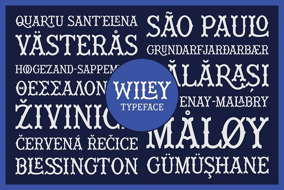 Wiley Decorative Latin & Greek Font in Display Fonts - product preview 13