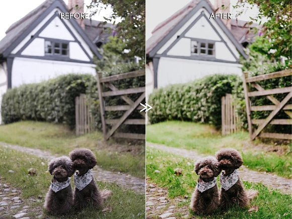 Vibrant SPRING Lightroom Presets in Add-Ons - product preview 6