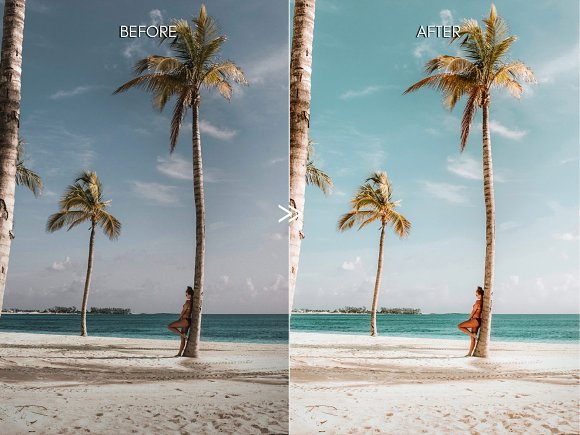 Vibrant MALIBU Mobile Phone Presets in Add-Ons - product preview 4
