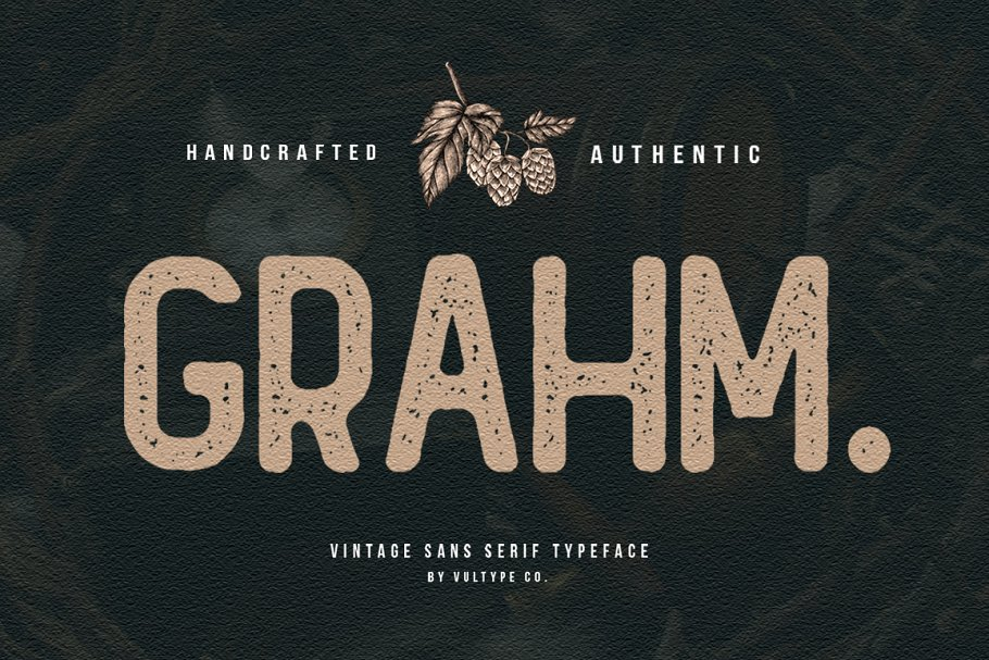 GRAHM Vintage Sans Serif in Sans-Serif Fonts - product preview 8