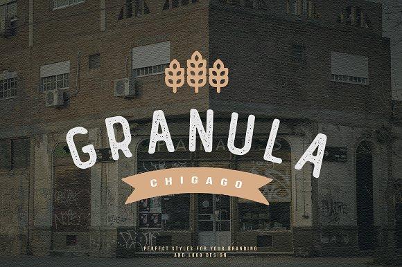 GRAHM Vintage Sans Serif in Sans-Serif Fonts - product preview 1